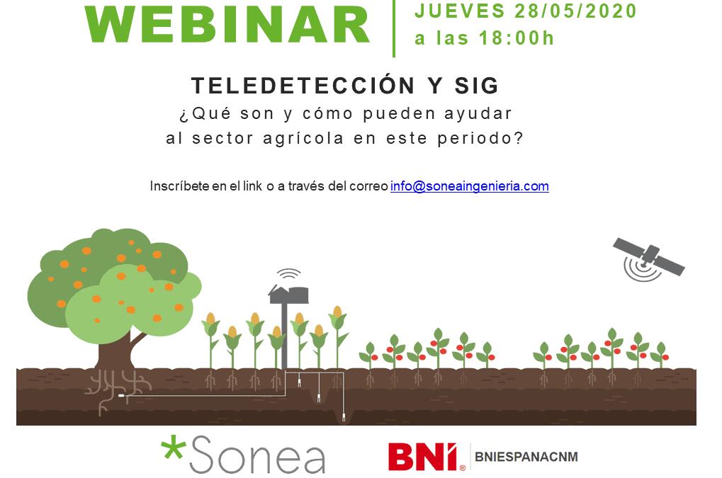 JUEVES 28/05/2020 a las 18h WEBINAR Teledetección y SIG (BNI)